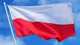 Nationalflagge Polen©ZDF